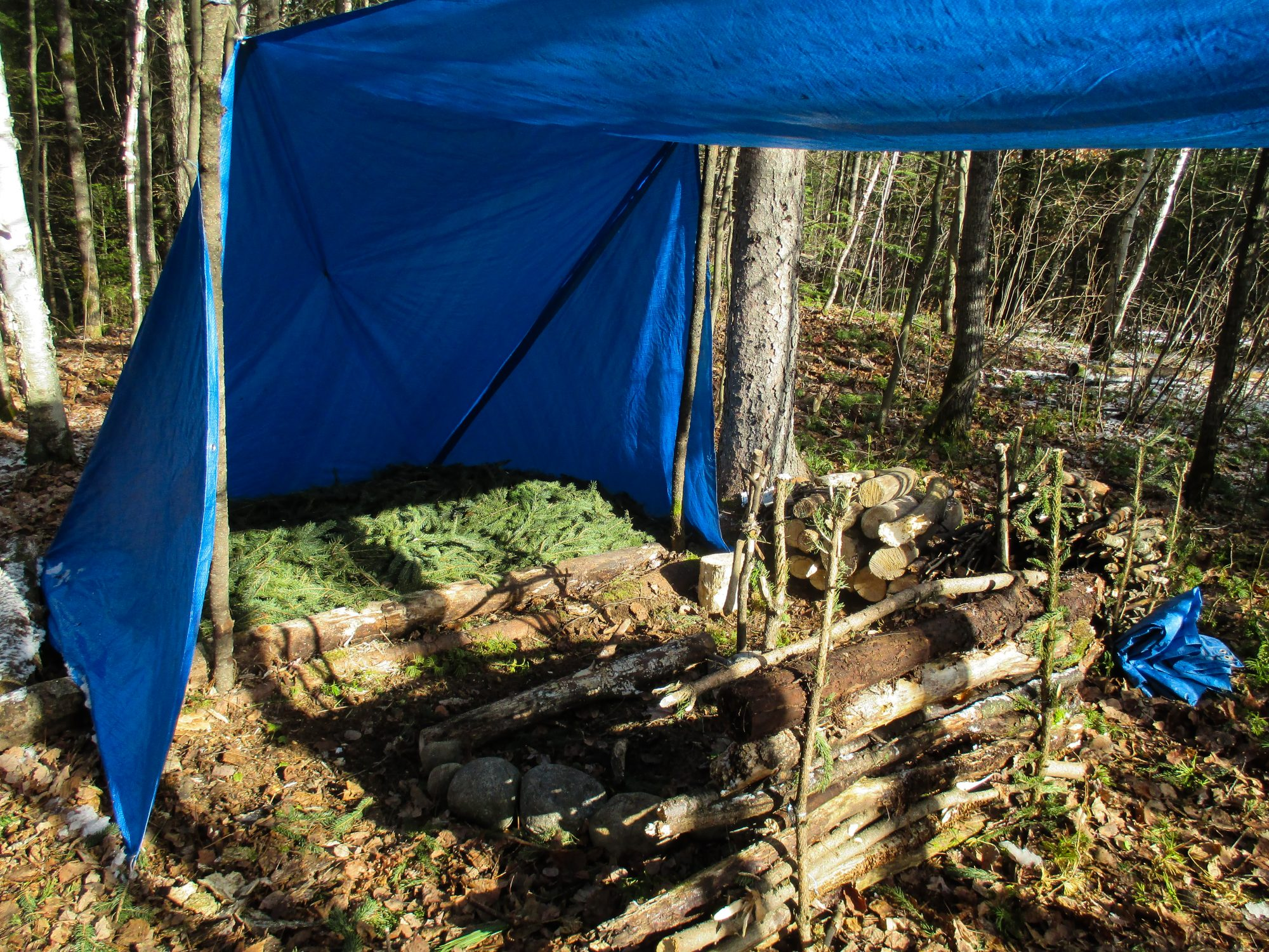 Bushcraft : la survie relax, de Billy Rioux