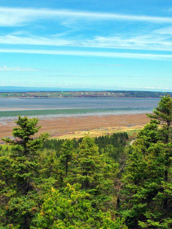 Dix randonnées à découvrir dans les parcs régionaux du Québec